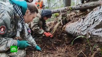 Как волонтеры на Сахалине ищут артефакты времен Второй мировой войны