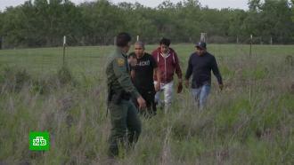 Наступление мигрантов на США: Техас начинает строить «стену Трампа»