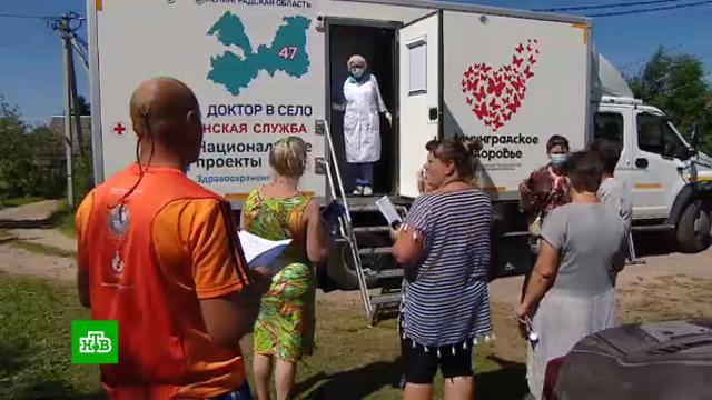 Впригороде Петербурга дачников вакцинируют на приусадебных участках