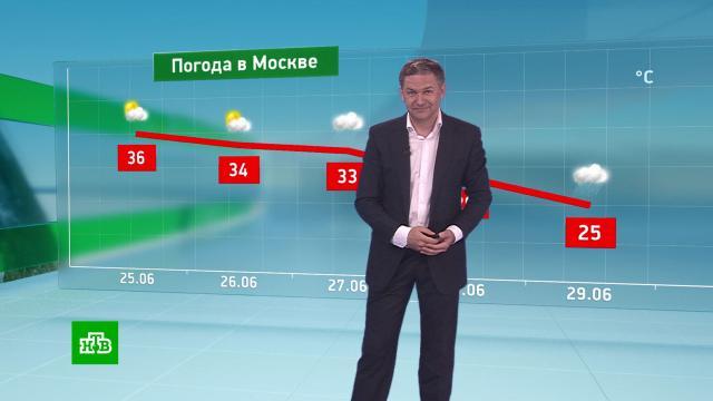 Утренний прогноз погоды на 25июня.погода, прогноз погоды.НТВ.Ru: новости, видео, программы телеканала НТВ
