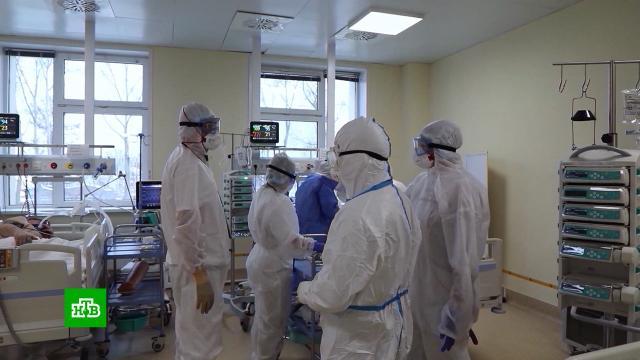 Почему в России сложились идеальные условия для эволюции коронавируса.болезни, вакцинация, здравоохранение, карантин, коронавирус, медицина, эпидемия.НТВ.Ru: новости, видео, программы телеканала НТВ