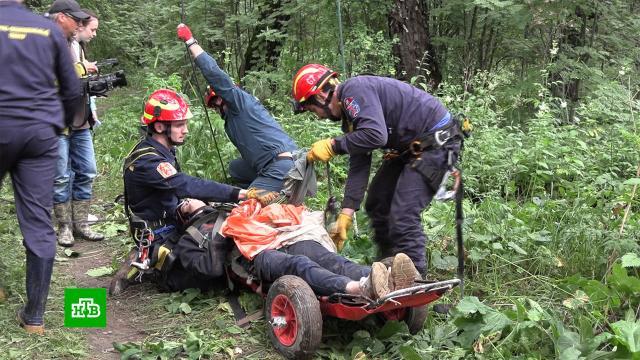 Спасатели рассказали, без каких предметов грибникам не стоит ходить влес.МЧС, волонтеры, грибы, лес, поисковые операции.НТВ.Ru: новости, видео, программы телеканала НТВ