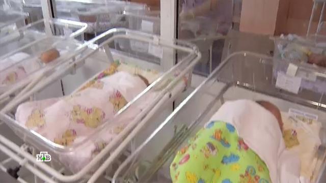 Врач рассказала, что ждет рожденных от COVID-пациенток детей.болезни, вакцинация, здоровье, коронавирус, прививки, эпидемия.НТВ.Ru: новости, видео, программы телеканала НТВ