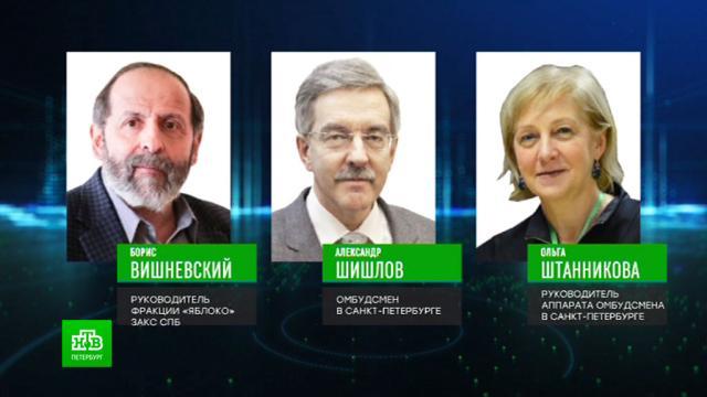 На выборы в ЗакС Петербурга от «Яблока» идут правозащитники.Санкт-Петербург, выборы, партии.НТВ.Ru: новости, видео, программы телеканала НТВ