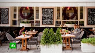 Столичные рестораторы просят сделать пропуск на летние веранды без QR-кода бессрочным