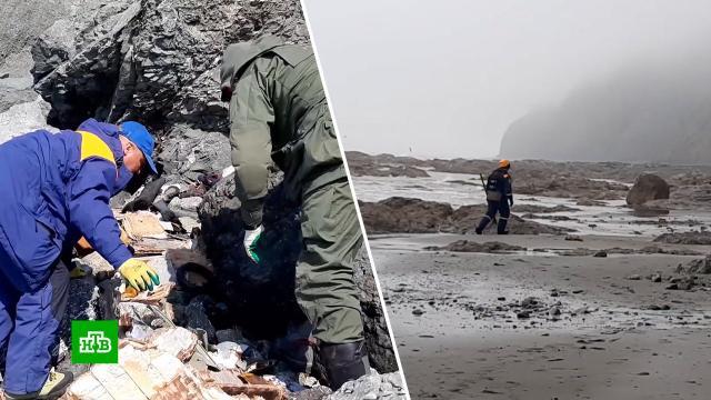 Найдены фрагменты тел всех погибших при крушении Ан-26 на Камчатке.Камчатка, авиационные катастрофы и происшествия, поисковые операции.НТВ.Ru: новости, видео, программы телеканала НТВ