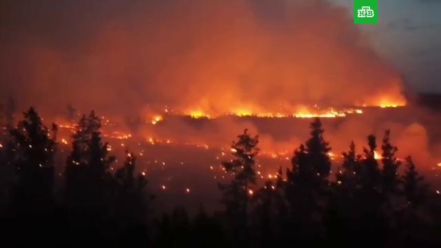 Огненный шторм в Челябинской области: пламя неслось со скоростью 150 метров в минуту.лесные пожары, Челябинская область.НТВ.Ru: новости, видео, программы телеканала НТВ