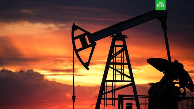 Доля нефтегазового сектора вструктуре ВВП России сократилась до 15%.ВВП, газ, нефть, социология и статистика, экономика и бизнес.НТВ.Ru: новости, видео, программы телеканала НТВ