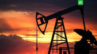 Доля нефтегазового сектора вструктуре ВВП России сократилась до 15%