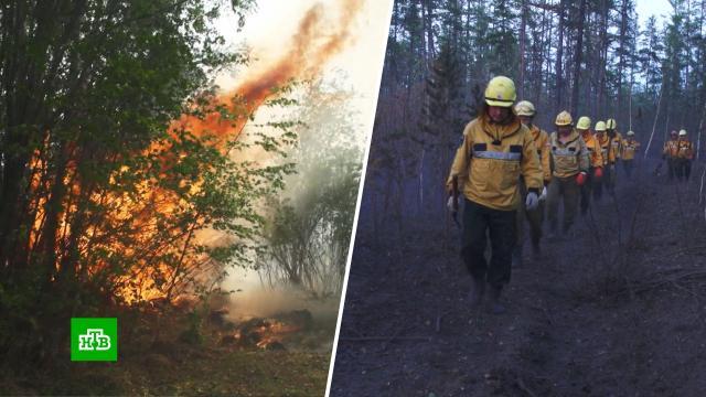 Площадь огня уменьшается медленно: в Якутии продолжают борьбу с лесными пожарами.Якутия, лесные пожары.НТВ.Ru: новости, видео, программы телеканала НТВ