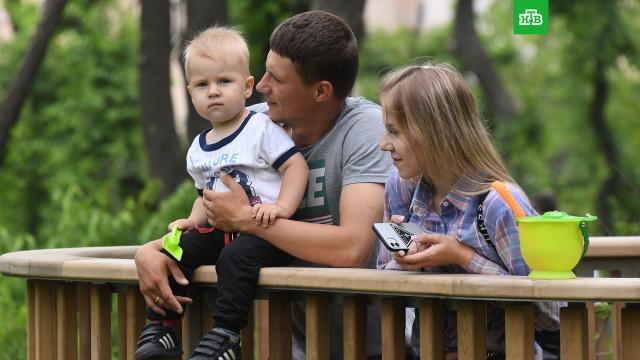 Российские семьи назвали необходимый минимальный доход.опросы, социология и статистика.НТВ.Ru: новости, видео, программы телеканала НТВ