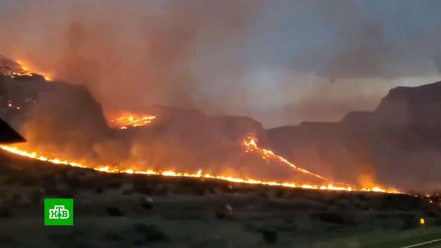 Лесные пожары на западе США вышли из-под контроля.США, лесные пожары.НТВ.Ru: новости, видео, программы телеканала НТВ