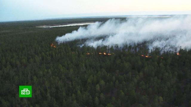 Военные самолеты сбросили тонны воды на очаги лесных пожаров в Якутии.Якутия, лесные пожары.НТВ.Ru: новости, видео, программы телеканала НТВ