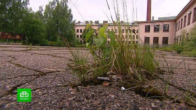 ВВыборге разрушаются здания бывшего военного городка