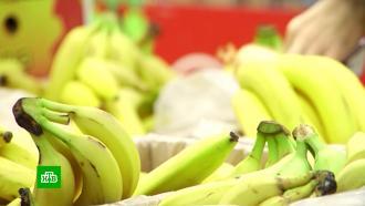 Эксперты не ждут снижения цен на бананы