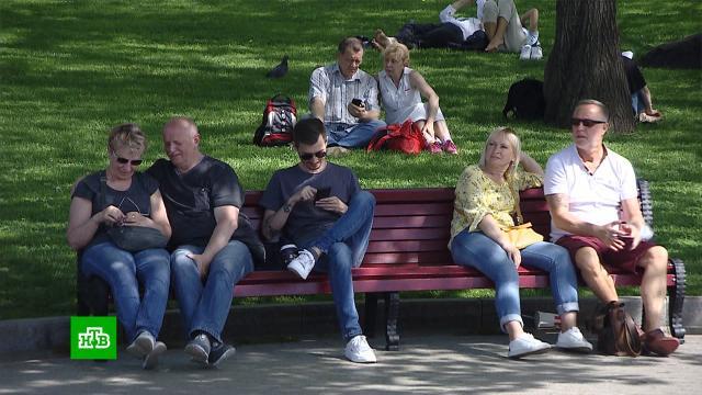 Москвичей и жителей ЦФО предупредили о резком похолодании.Москва, жара, лето, погода, погодные аномалии.НТВ.Ru: новости, видео, программы телеканала НТВ