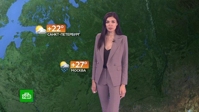 Прогноз погоды на 20июля.погода, прогноз погоды.НТВ.Ru: новости, видео, программы телеканала НТВ
