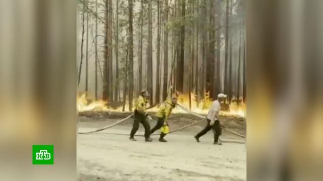 Население охваченных пожарами районов Карелии эвакуировано.Карелия, лесные пожары, эвакуация.НТВ.Ru: новости, видео, программы телеканала НТВ