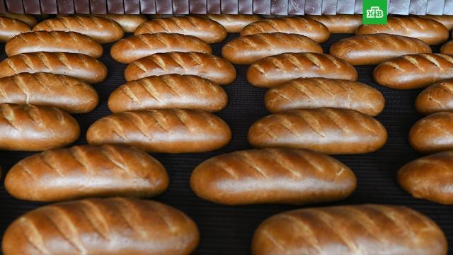 Минсельхоз РФ не ожидает «существенного» роста цен на хлеб.магазины, сельское хозяйство, тарифы и цены, торговля, хлеб, экономика и бизнес.НТВ.Ru: новости, видео, программы телеканала НТВ