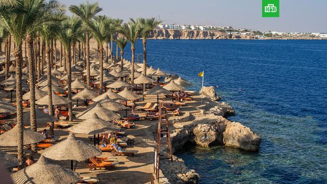 Все заявки на полеты на курорты Египта отклонены Росавиацией.Египет, авиация, туризм и путешествия.НТВ.Ru: новости, видео, программы телеканала НТВ