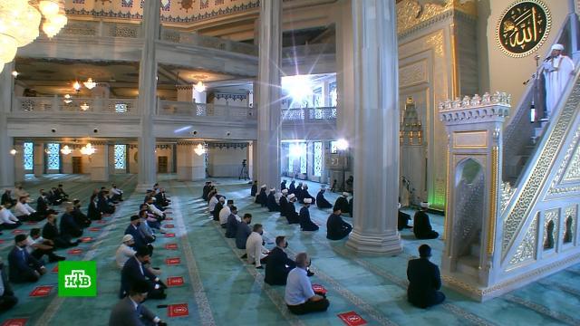 Путин поздравил российских мусульман спраздником Курбан-байрам.Путин, ислам, религия, торжества и праздники.НТВ.Ru: новости, видео, программы телеканала НТВ