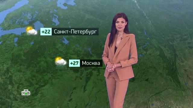 Утренний прогноз погоды на 20июля.погода, прогноз погоды.НТВ.Ru: новости, видео, программы телеканала НТВ