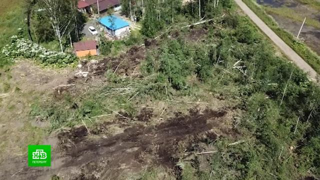 Почему держат оборону дачники, чье садоводство превратилось вфедеральную стройплощадку