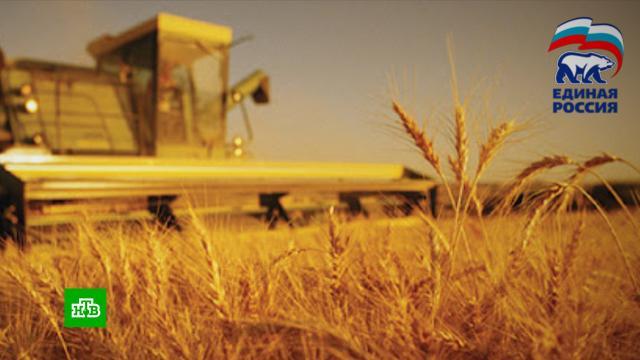 Поддержку сельского хозяйства обсудили в «Единой России».Единая Россия, сельское хозяйство.НТВ.Ru: новости, видео, программы телеканала НТВ