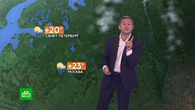 Прогноз погоды на 23июля.погода, прогноз погоды.НТВ.Ru: новости, видео, программы телеканала НТВ