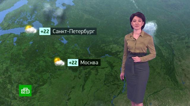 Утренний прогноз погоды на 22июля.погода, прогноз погоды.НТВ.Ru: новости, видео, программы телеканала НТВ