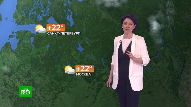 Прогноз погоды на 24июля.погода, прогноз погоды.НТВ.Ru: новости, видео, программы телеканала НТВ