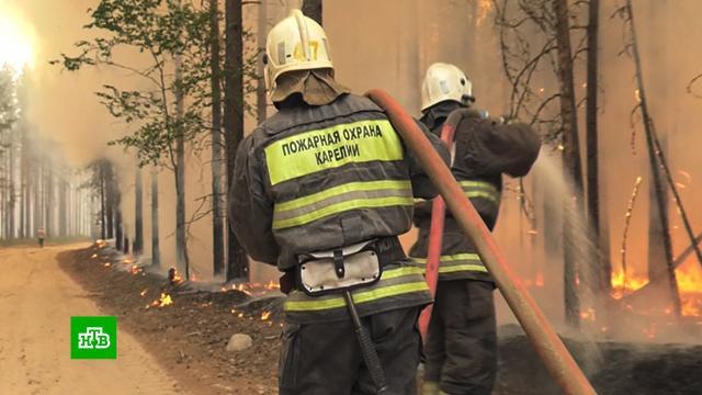 Война сбольшим огнем: лесные пожары вКарелии охватили девять тысяч гектаров.Карелия, лесные пожары.НТВ.Ru: новости, видео, программы телеканала НТВ