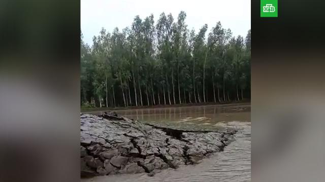 Видео с поднявшимся из воды земляным пузырем шокировало зрителей.Индия.НТВ.Ru: новости, видео, программы телеканала НТВ