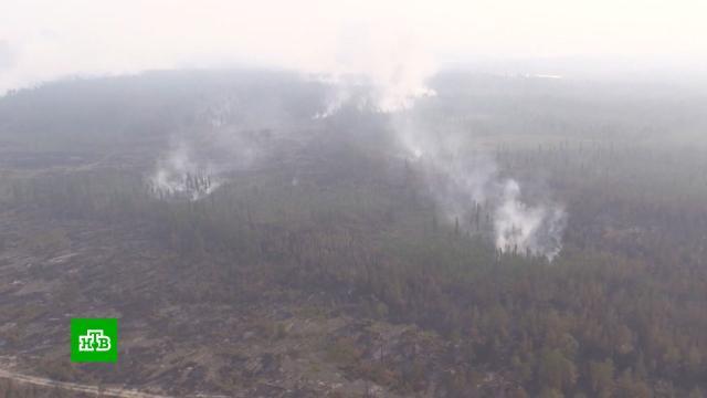 Тайга горит полтора месяца: вЯкутии обнаружили 18новых лесных пожаров