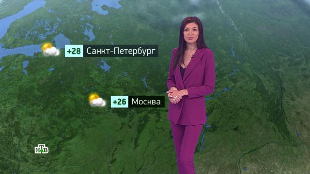 Утренний прогноз погоды на 26июля.погода, прогноз погоды.НТВ.Ru: новости, видео, программы телеканала НТВ