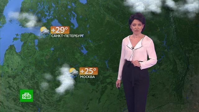 Прогноз погоды на 28 июля.погода, прогноз погоды.НТВ.Ru: новости, видео, программы телеканала НТВ