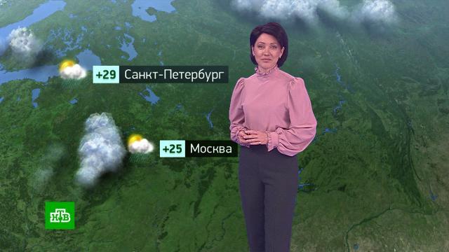 Утренний прогноз погоды на 28июля.погода, прогноз погоды.НТВ.Ru: новости, видео, программы телеканала НТВ