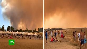 Серое небо, пепел игарь: российские туристы рассказали опожарах вТурции