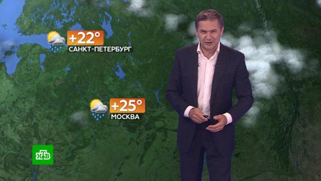 Прогноз погоды на 30июля.погода, прогноз погоды.НТВ.Ru: новости, видео, программы телеканала НТВ