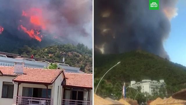 Сотню российских туристов эвакуируют из отеля вБодруме из-за лесных пожаров.Турция, лесные пожары, туризм и путешествия.НТВ.Ru: новости, видео, программы телеканала НТВ