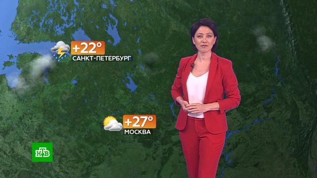 Прогноз погоды на 31июля.погода, прогноз погоды.НТВ.Ru: новости, видео, программы телеканала НТВ