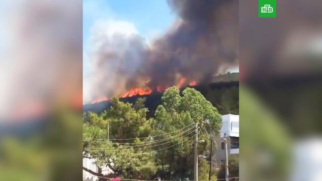 ВБодруме эвакуировали постояльцев трех отелей из-за лесного пожара.Турция, лесные пожары, туризм и путешествия.НТВ.Ru: новости, видео, программы телеканала НТВ