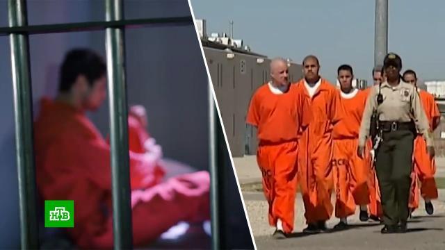 Миллиардные обороты: частные тюрьмы вСША превратились вуспешный бизнес.США, права человека, тюрьмы и колонии.НТВ.Ru: новости, видео, программы телеканала НТВ