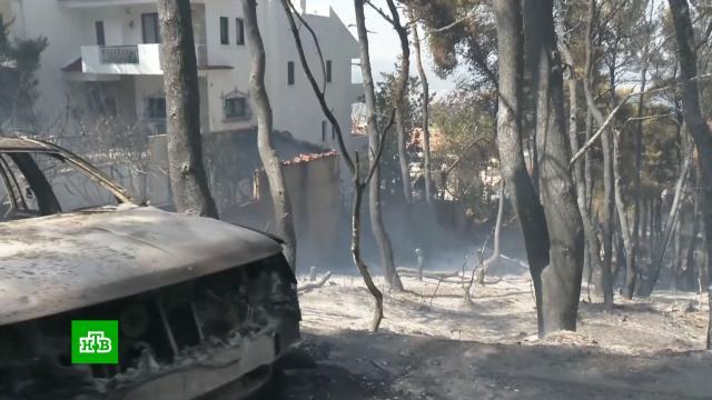 Около 100 россиян покинули свои отели в Турции из-за пожаров.Турция, лесные пожары, стихийные бедствия, туризм и путешествия.НТВ.Ru: новости, видео, программы телеканала НТВ