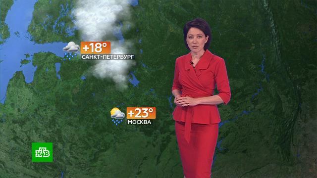 Прогноз погоды на 3августа.погода, прогноз погоды.НТВ.Ru: новости, видео, программы телеканала НТВ