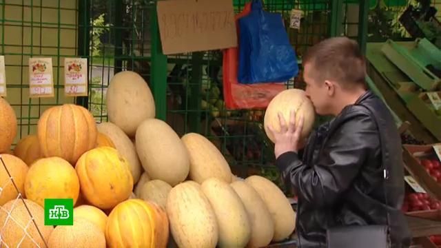 В Москве заработали бахчевые развалы.продукты, торговля, экономика и бизнес.НТВ.Ru: новости, видео, программы телеканала НТВ