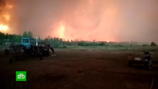 ВЯкутии огонь прошел площадь в4миллиона гектаров.Якутия, лесные пожары.НТВ.Ru: новости, видео, программы телеканала НТВ
