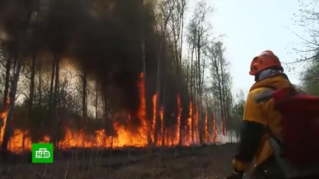 Огненная лавина из Якутии накрывает Иркутскую область.Минобороны РФ, Якутия, лесные пожары, пожары.НТВ.Ru: новости, видео, программы телеканала НТВ