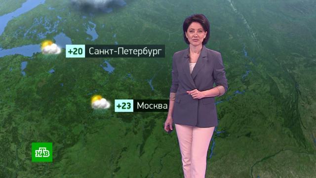 Утренний прогноз погоды на 4августа.погода, прогноз погоды.НТВ.Ru: новости, видео, программы телеканала НТВ