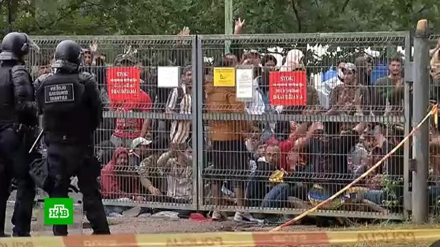 Пограничный кризис между Литвой иБелоруссией грозит обернуться гуманитарной катастрофой.Белоруссия, Литва, мигранты.НТВ.Ru: новости, видео, программы телеканала НТВ